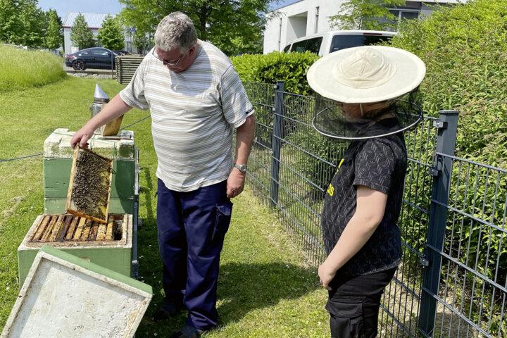 Bienenstöcke bei Wilke