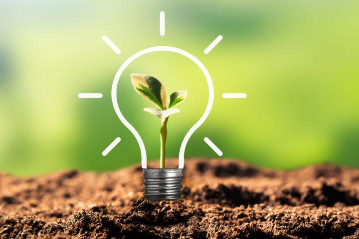 Nachhaltigkeit wird bei Wilke großgeschrieben